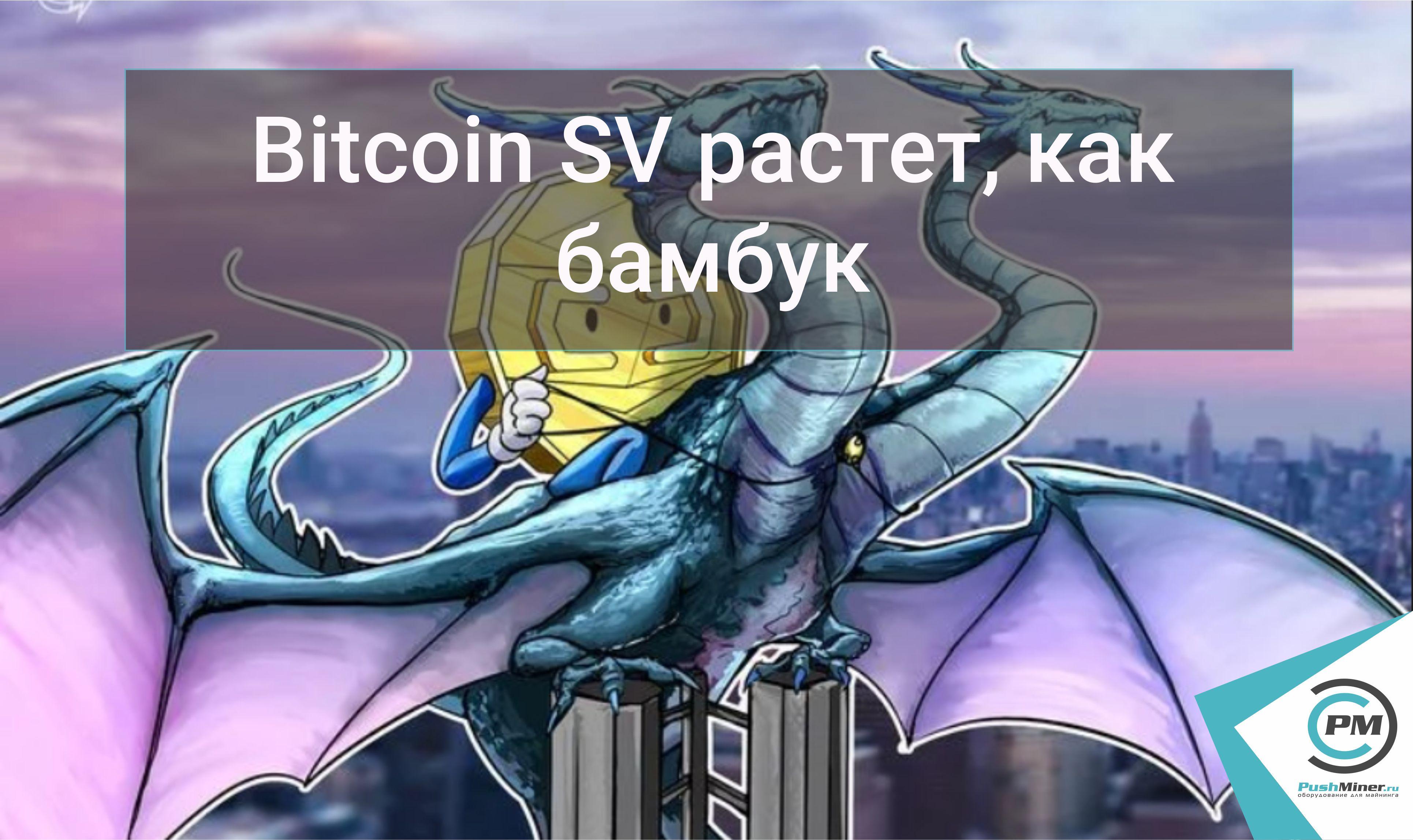 Bitcoin SV растет, как бамбук